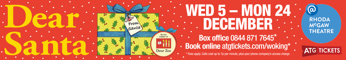 Dear Santa at Rhoda McGaw Theatre, Woking