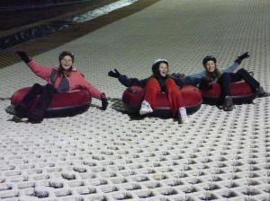 The Guildford Ski Slope