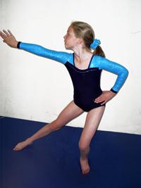 South Western Gymnastics Club