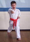 Farnham Karate Club