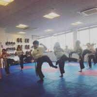 Mavericks Martial Arts Academies