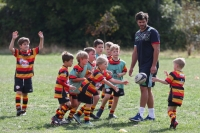 Harlequins Ruby Camps